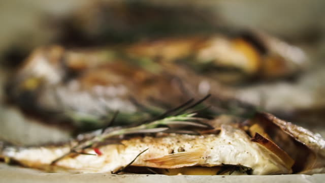vídeos de stock e filmes b-roll de fresh baked fish with rosemary and lemon on baking paper. healthy food concept. - inteiro