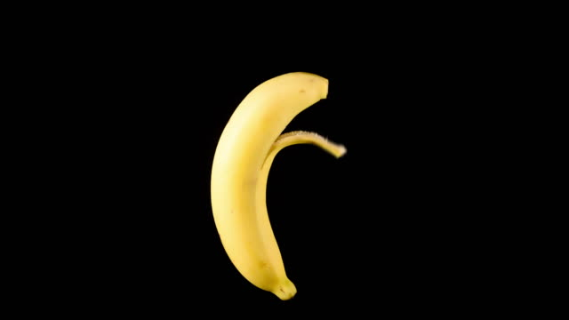 Fresh banana being peeling with no hands on black background