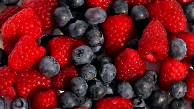 fresh berries - raspberry and blueberry video