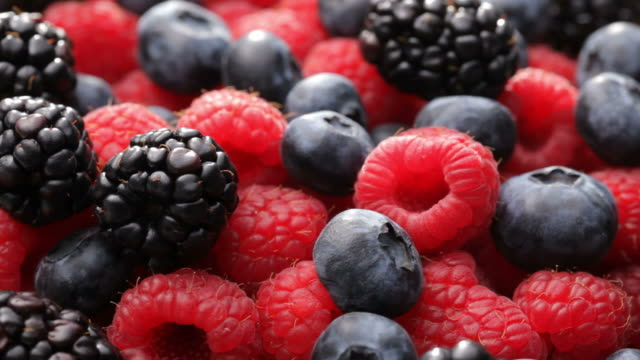 fresh blueberries, blackberries and raspberries - friskhet bildbanksvideor och videomaterial från bakom kulisserna