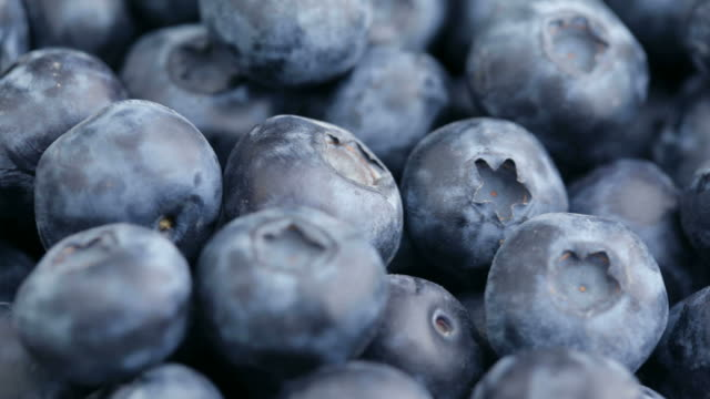 Fresh blueberries, fruit background video