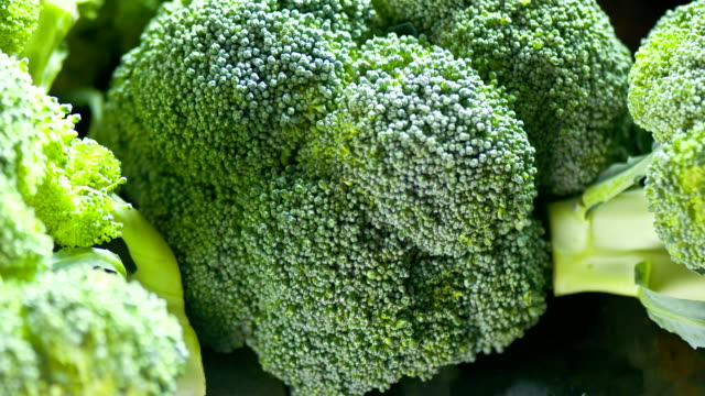 fresh broccoli primo piano - broccolo video stock e b–roll