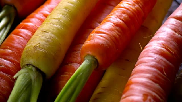 vídeos de stock, filmes e b-roll de cenoura fresca close-up - punhado