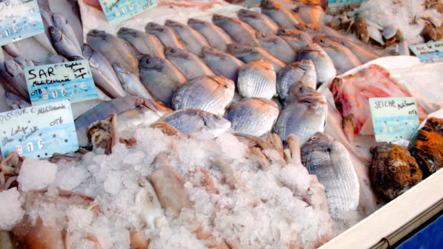 Fresh catch for sale at the market video