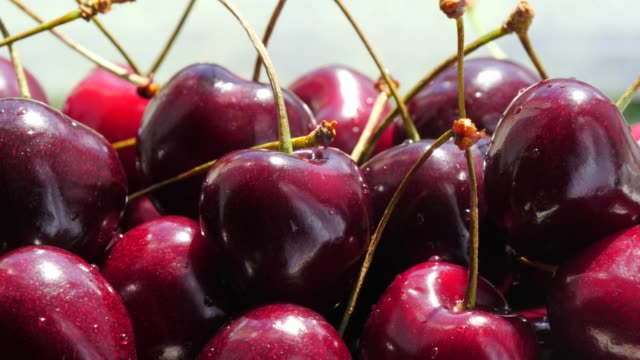 Fresh cherry fruits close up Close up of many fresh cherry fruits. Healthy eating, season harvest cherry stock videos & royalty-free footage
