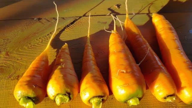 färska rena morötter närbild på en trä bakgrund, kamera rörelse ovanifrån, solnedgång mjukt gyllene ljus, utomhus, 4k. - lucia bildbanksvideor och videomaterial från bakom kulisserna