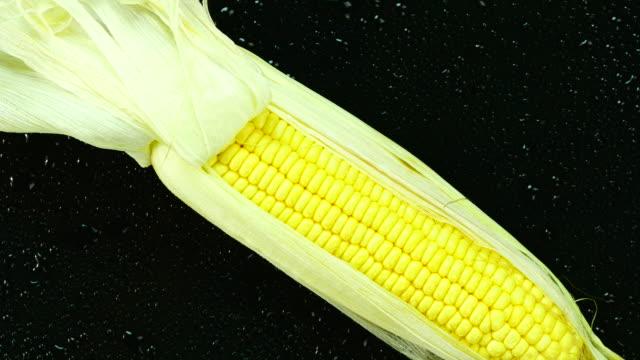 Fresh corn. Top view. Close up. video