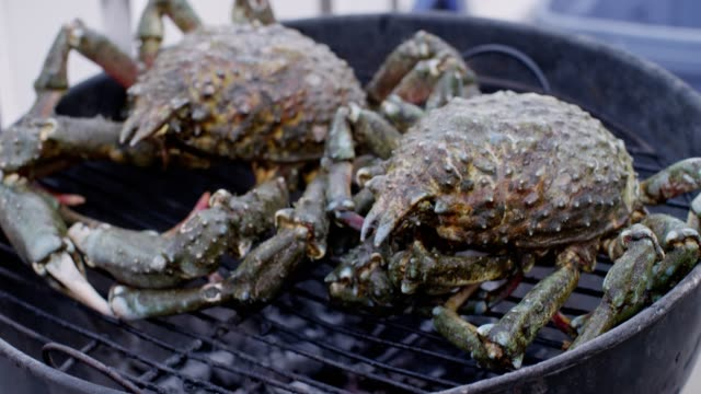 Fresh crabs on the grill