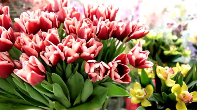 DOLLY: Fresh Cut Flowers In Florist Shop