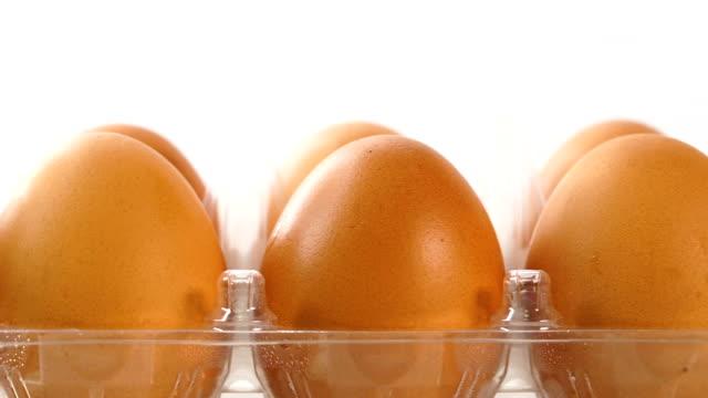vídeos de stock, filmes e b-roll de ovos frescos - cru