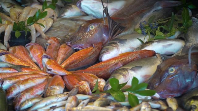 Fresh fishes in the market video