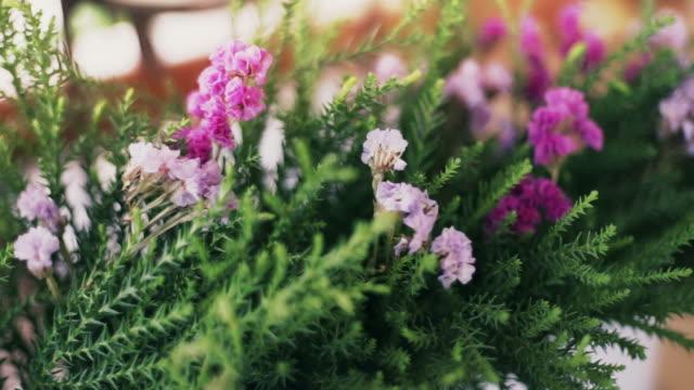 Fresh Flowers video