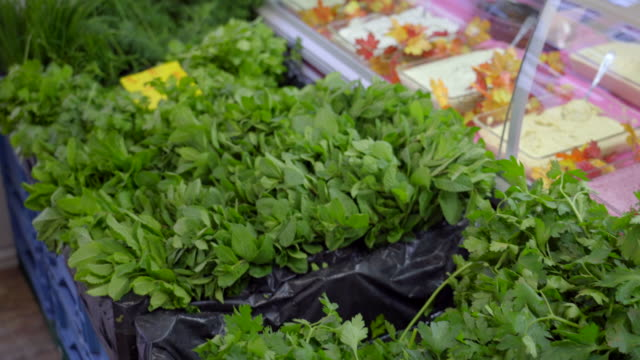 fresh healthy herbs - paleo diet stock videos and b-roll footage