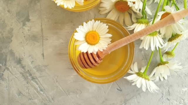 vídeos y material grabado en eventos de stock de margarita de miel fresca en fondo de hormigón gris cámara lenta - manzanilla