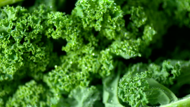 fresh kale close up - superfoods stock videos and b-roll footage