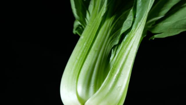 vídeos de stock e filmes b-roll de fresh kale vegetable rotating - crucíferas