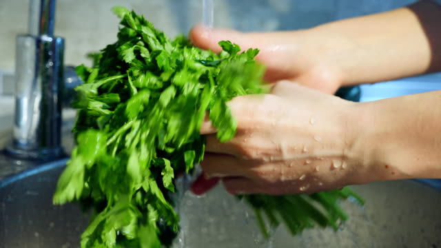 Fresh lettuce being washed making water spray video