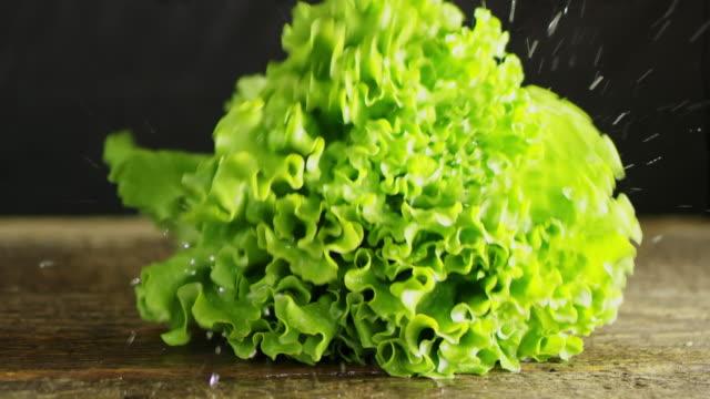 slo mo fresh lettuce falling on a table - jarzyna filmów i materiałów b-roll