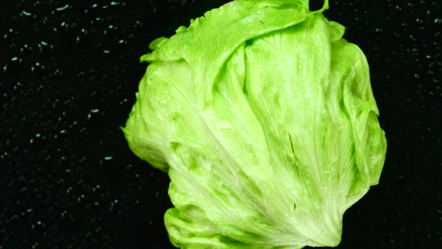 Fresh lettuce. Top view. Close up. video