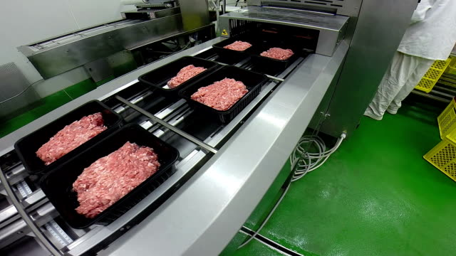 Fresh Minced Pork Meat Box Packaging Fresh minced pork meat packaging process in meat industry. HD1080p ground beef stock videos & royalty-free footage