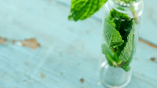Fresh mint leaves in jar 4k video