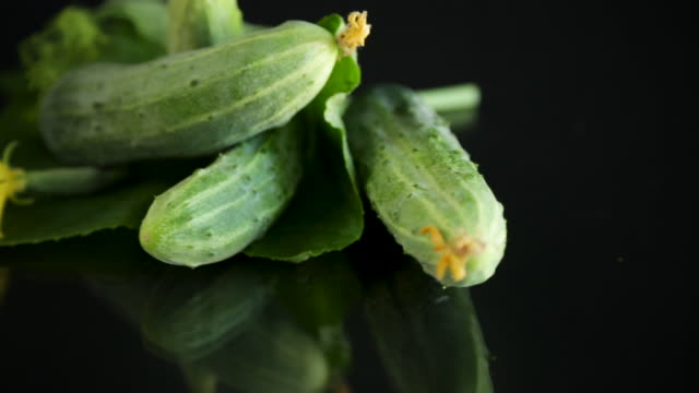 fresh natural green cucumbers on a black video