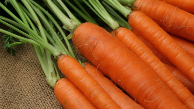 fresh organic carrots, closeup - morot bildbanksvideor och videomaterial från bakom kulisserna