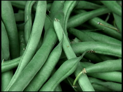 Fresh Organic Green Bush Beans video