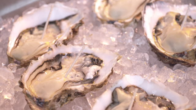 Fresh Oysters on ice in fish market.