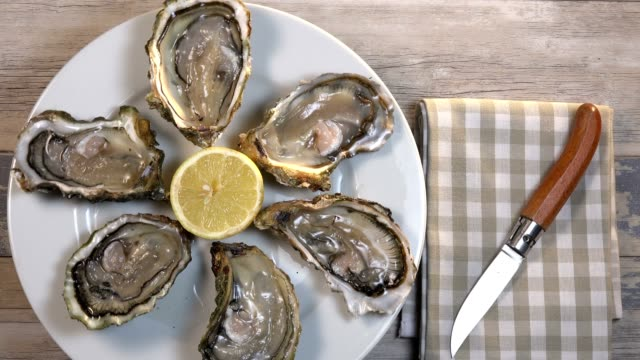 Fresh oysters white plate and lemon on wooden desk, Turntable video