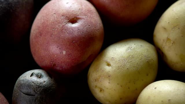 Fresh Potato close up Fresh Potato dolly shot red potato stock videos & royalty-free footage