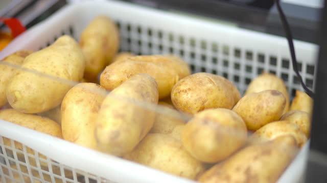 Fresh potato on basket
