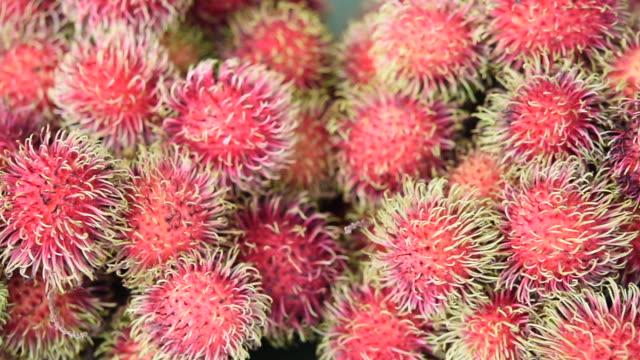 Fresh Rambutan fruits in Thailand