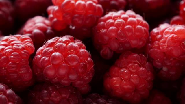 stockvideo's en b-roll-footage met verse frambozen fruit als voedsel achtergrond 4k - plantdeel