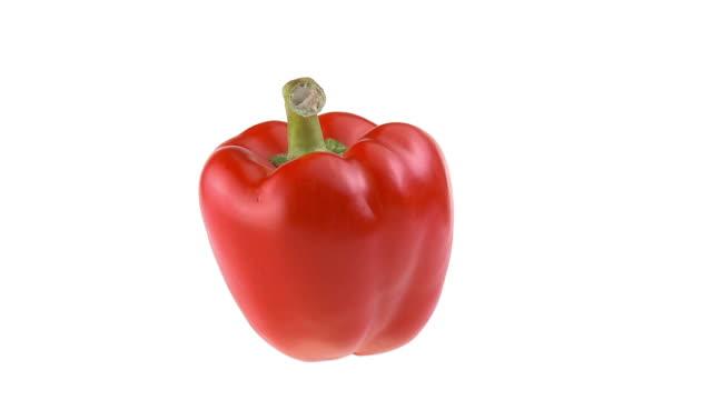 vídeos de stock e filmes b-roll de loop de hd: pimentão vermelho fresco - red bell pepper isolated