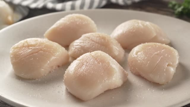 fresh sea scallops - seafood stock videos and b-roll footage