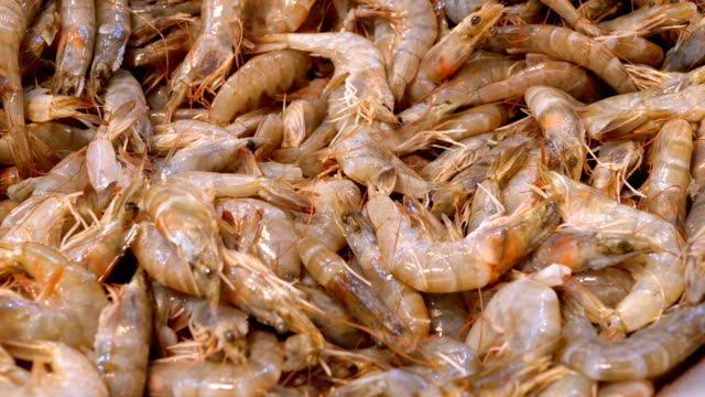 Fresh Shrimps are Sold in an Open Store Window on the Street Market. Egypt