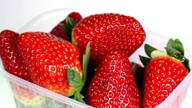 fresh strawberries in packaging video