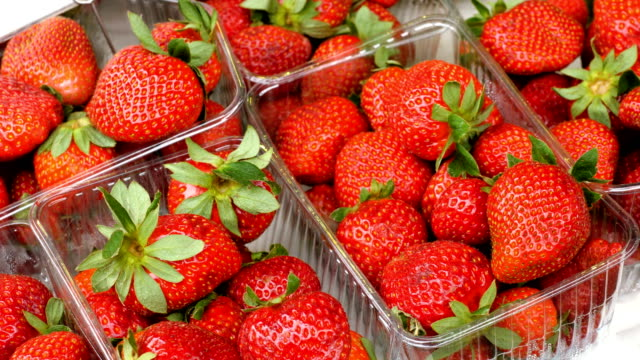 fresh strawberry. close-up shot of ripe red strawberries in six plastic boxes in food market. 4k - fragole video stock e b–roll