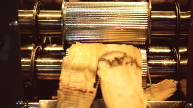 fresh sugarcane juice extracted from machine in thailand - canna da zucchero video stock e b–roll