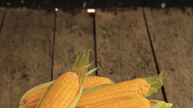 färsk majs på majskolvar på rustika träbord - skalhylsa bildbanksvideor och videomaterial från bakom kulisserna