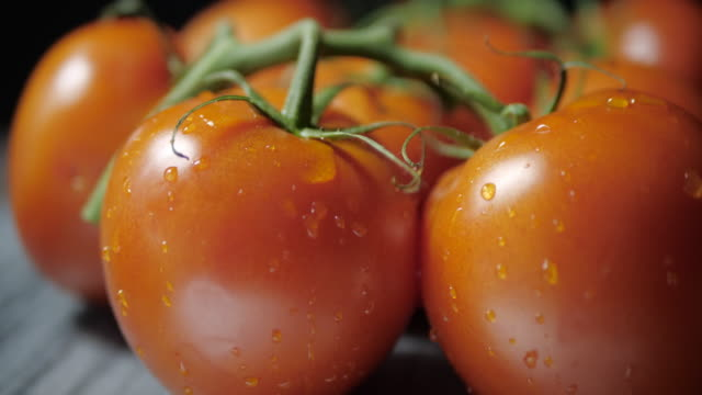 Fresh tomatoes rotate to the left, after stopping a drop of water drops from a tomato. Counterclockwise rotation.Side view. tomato salad stock videos & royalty-free footage