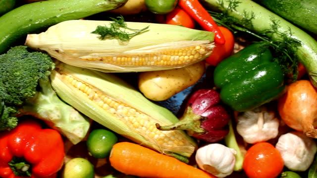 vídeos de stock e filmes b-roll de fresh vegetables - crucíferas