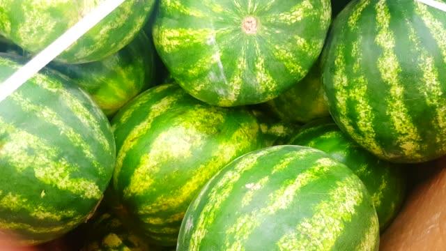 färska hela mogna vattenmeloner på disken i en grönsaksaffär, långsam kamerarörelse, top view, 4k video - lucia bildbanksvideor och videomaterial från bakom kulisserna