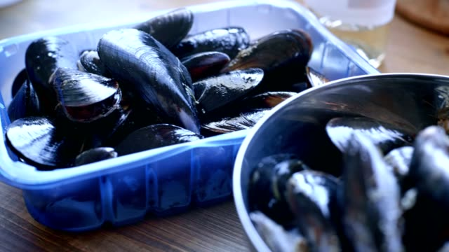 Freshly bought seafood mussels video