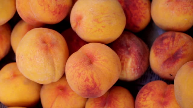 Freshly picked ripe peaches in a basket