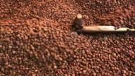 istock Freshly Roasted Coffee Beans 1278882520