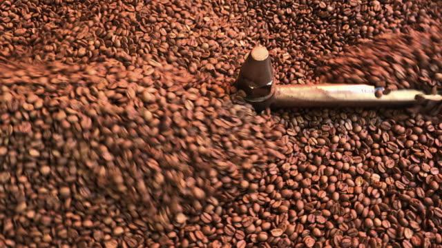 freshly roasted coffee beans - cultura turca video stock e b–roll