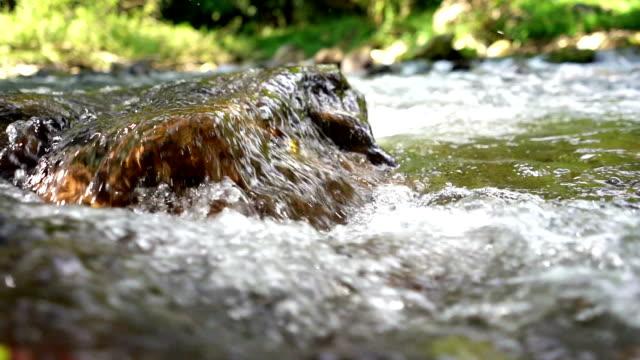 vídeos de stock, filmes e b-roll de mola de água doce - penedo