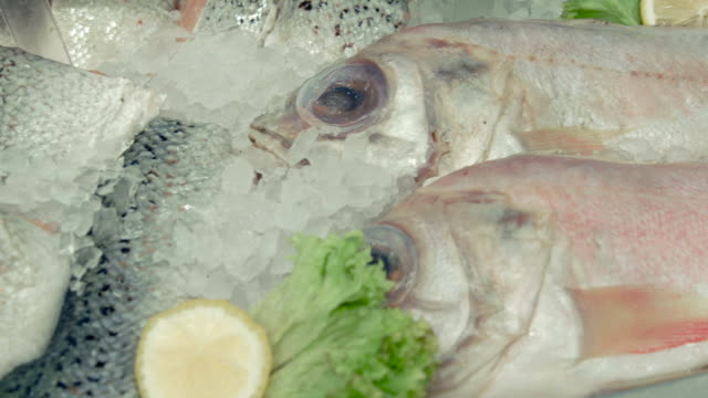 Fridge with seafood in the supermarket video